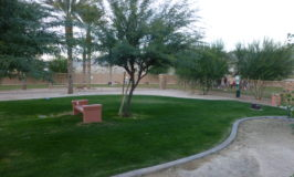 Dog Parks in Sun City Shadow Hills